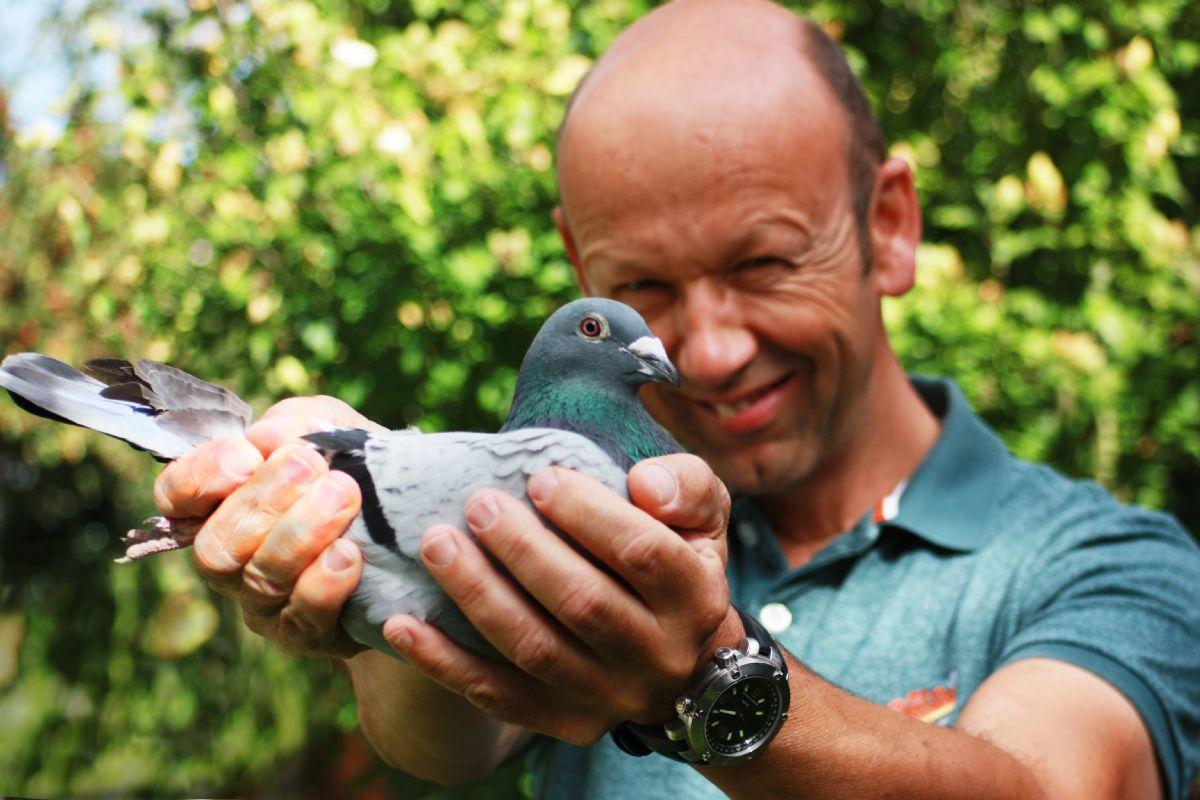 Frans Strikker won 1st Duffel 2,078 pigeons (descendant Indy)